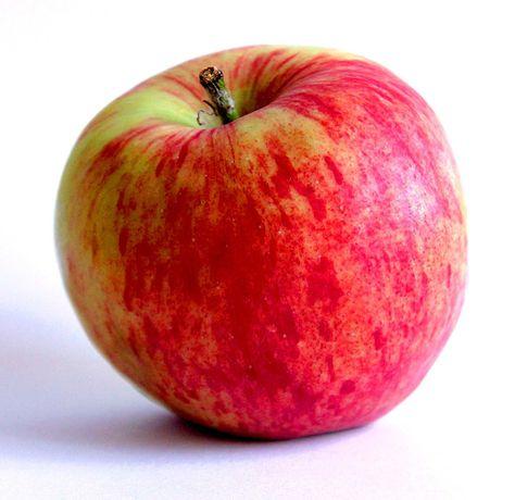 Sprzedam smaczne  jabłka czempion i inne