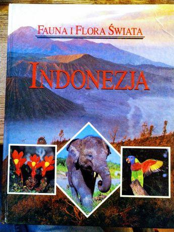 Indonezja Fauna i Flora Swiata muza