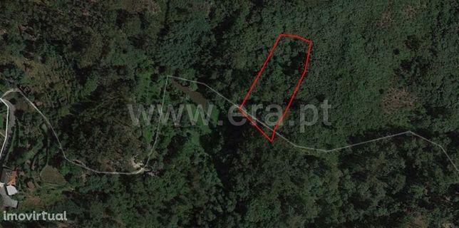 Terreno para plantações com 2.400 m2 em Vila Cova