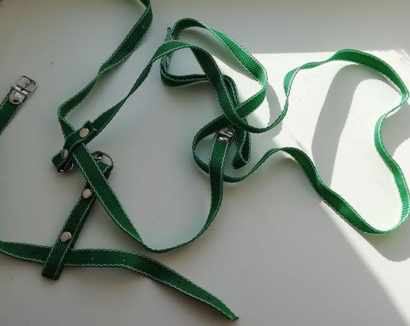 Поводок зелёный