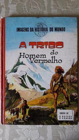 Lote de 4 Livros em Capa Dura
