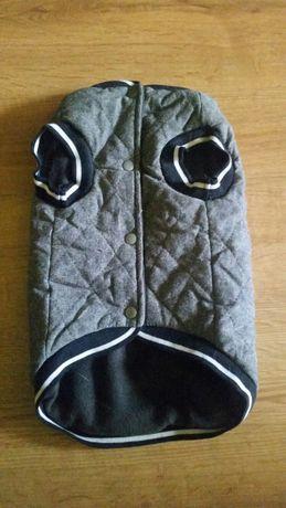 Ubranko dla psa kamizelka