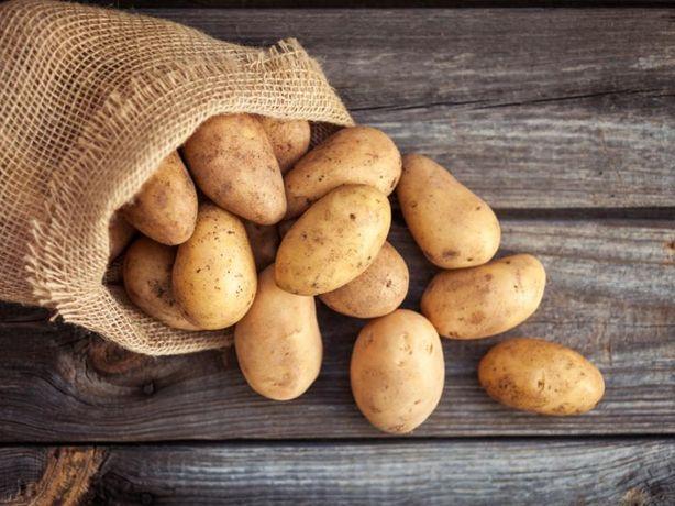 Ziemniak drobny i burak czerwony