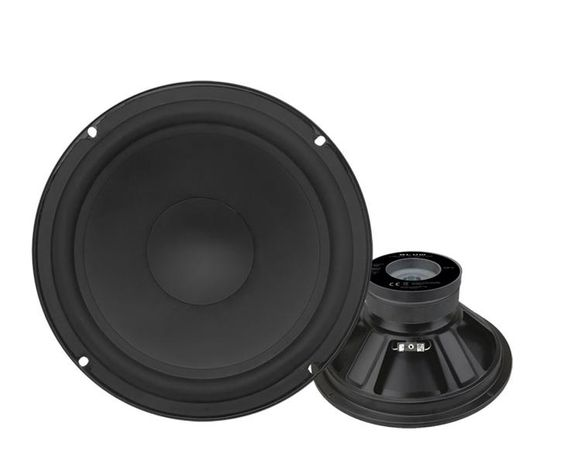 Głośnik GDN 25cm, 8ohm, Zamiennik Tonsil, Altus, Alton, Technics