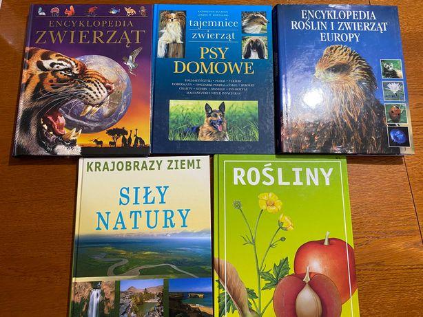 Encyklopedie książki rośliny zwierzęta natura psy