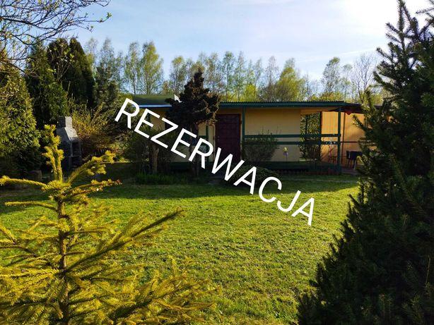 Ogródek działkowy ROD Zagłębie