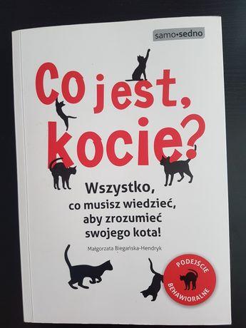 Co jest kocie? Małgorzata Biegańska-Hendryk