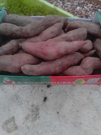 batata doce nova varias qualidades 0,80 cêntimos kilo