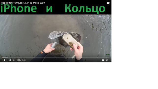 Услуга Металлоискателя, металоискателя (металлодетектора)