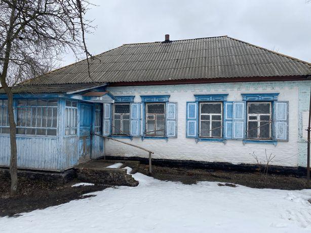 Продается дом + участок в с. Бочечки Конотопского района Сумской обл.