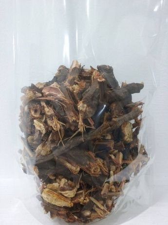 Rdestowiec Japoński korzeń 1 kg POLSKA Rdest