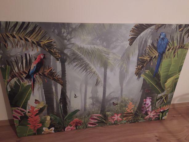 Obraz dżungla duży