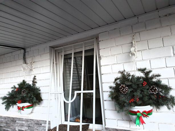 Ель голубая,новогоднее украшение дома, замена петуньям при входе в дом