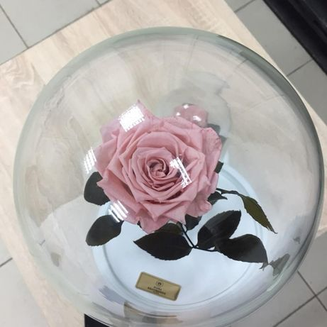 Роза в Колбе +(коробка,гравировка)НОВИНКА 2018 года