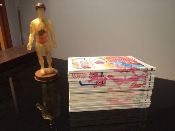 Sekrety ludzkiego ciała Deagostini książki i model człowieka