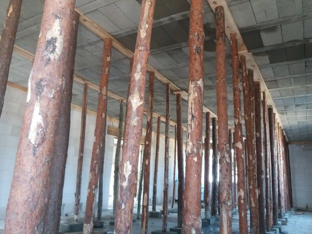 Stemple budowlane sosnowe
