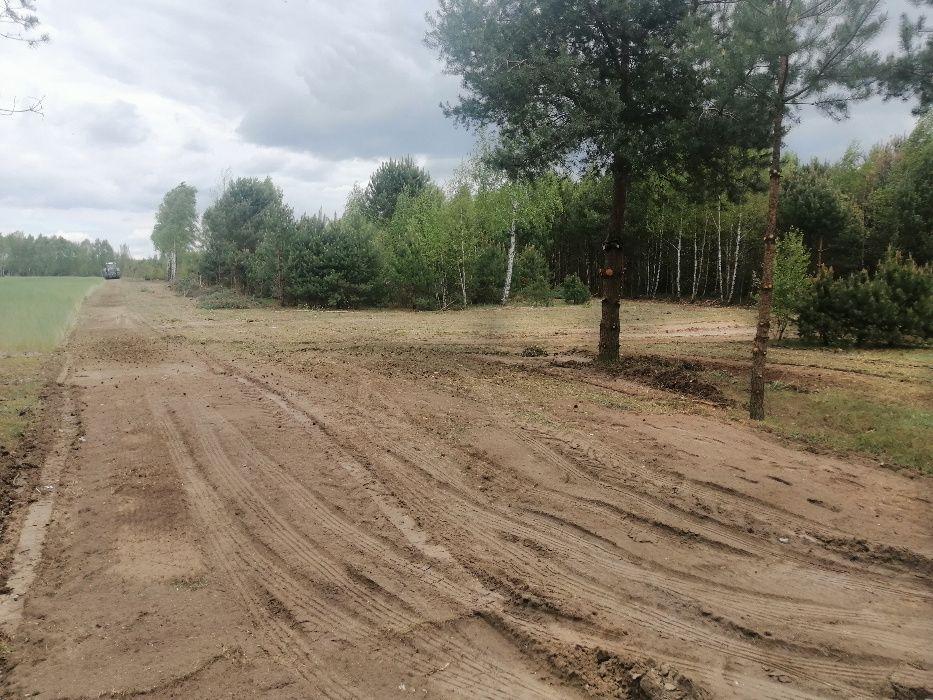 Mulczer Leśny Wycinka drzew - FIRMA PILAR  Czyszczenie działek