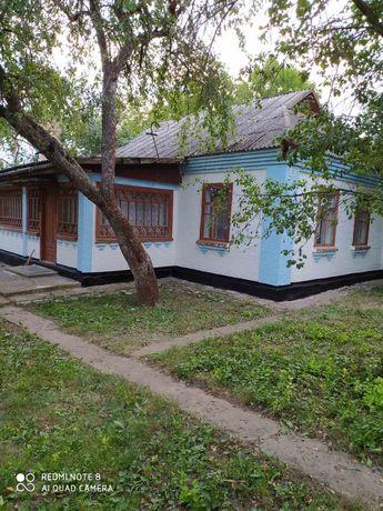 Продається будинок в с. Христинівка