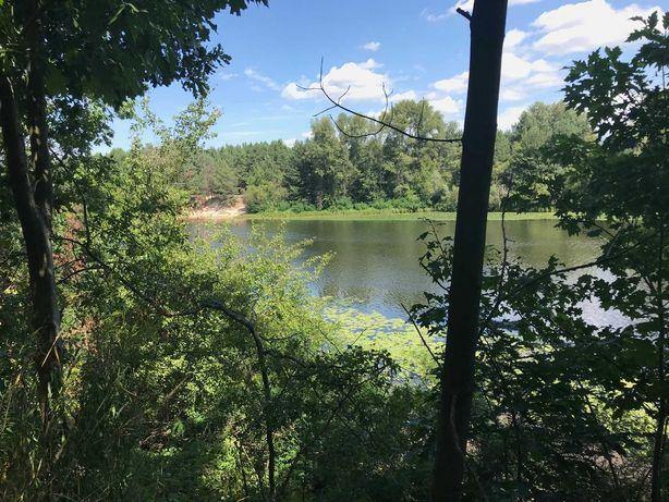 Продажа участка 45 сот. с выходом на воду + сосновый лес, КГ Pine Hill