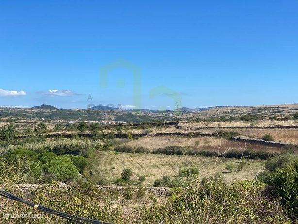 Terreno - Ericeira 8 km, A Casa das Casas