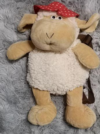 Plecaczek owieczke