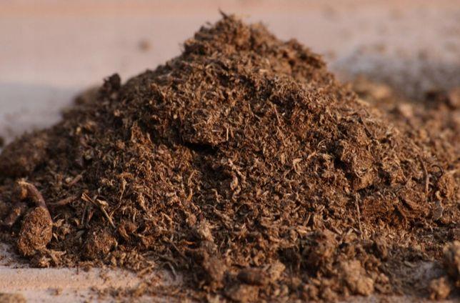 Torf spaghnum do rosiczki, muchołówki 1l- rośliny owadożerne, rosiczka