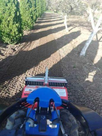 Glebogryzaraka separacyjna, zakładanie trawników, wertykulacja aeracja