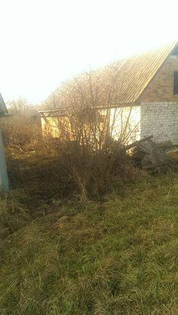 ТОРГ. Продається приватний будинок в с.Карвинівка(Романівський район)