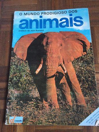 Caderneta Disvenda - O mundo prodígio dos animais