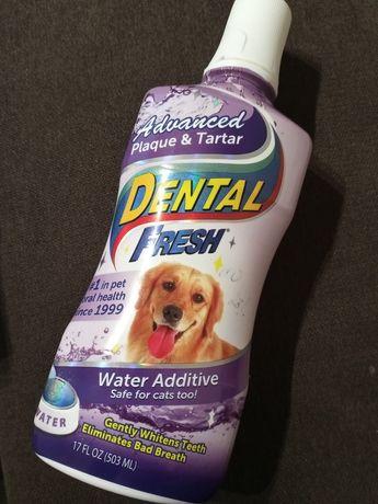 Dental Fresh 503 ml