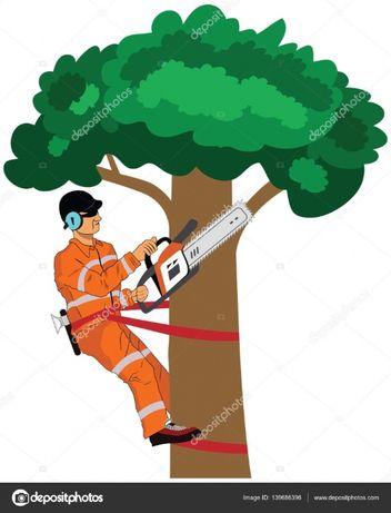 Попилять дерева, дрова, порубать дрова, земляні та ін роботи по Району