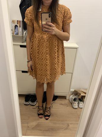 Koronkowa sukienka ZARA, XS/164