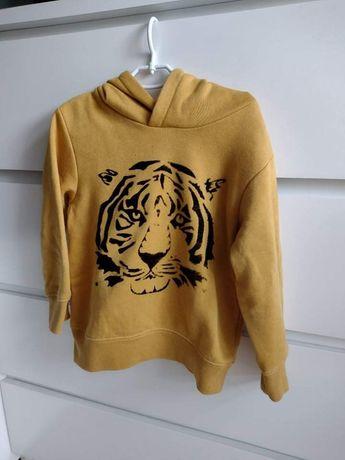 Bluza dla chłopca 98/104