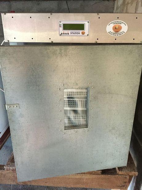 Продам инкубатор Эталон 400