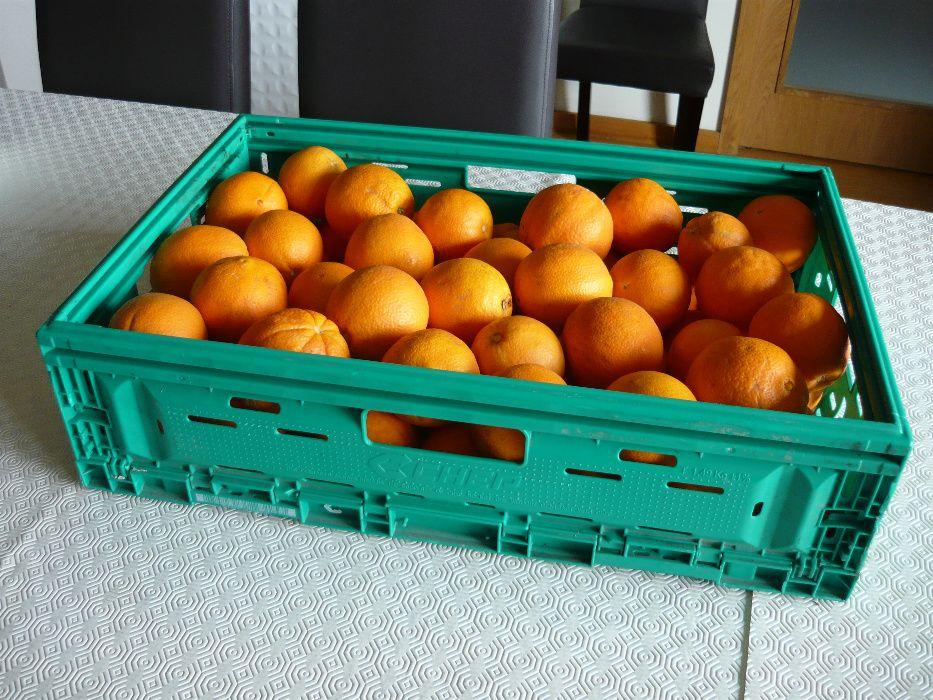 Cabaz de fruta - Laranja - do Pinhão - Região do Douro