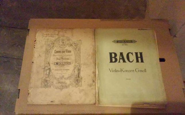 Nuty violin konzert J S Bach