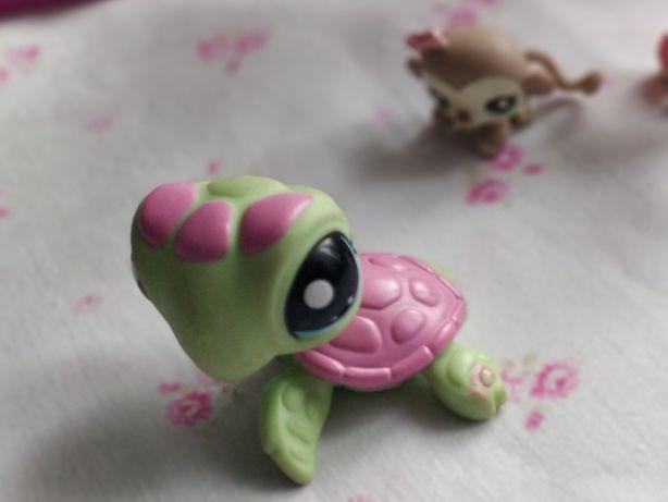 Littlest Pet Shop - LPS - Hasbro -  Zielono-różowy żółw żółwik