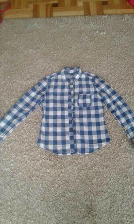 Damska koszula w kratę Hollister, r. xs
