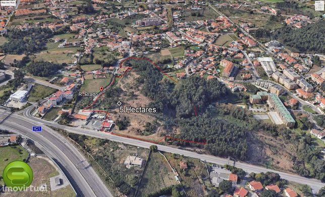 Terreno Para Construção, Francelos (Praias)