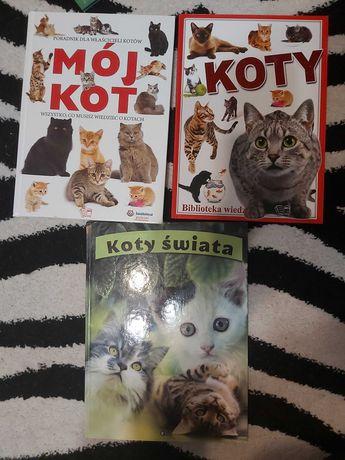 3 książki Albumy o kotach
