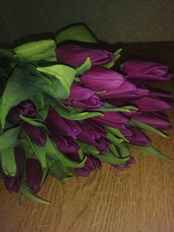 Тюльпани квіти на подарунок