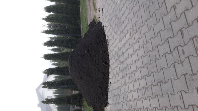 Ziemia ogrodowa torfowa