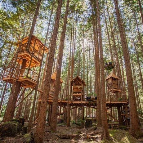 Домик гостевой на дереве