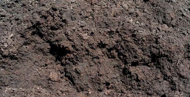 Ziemia czarna ogrodowa z torfem sortowana