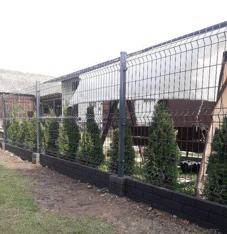 Panele ogrodzeniowe 120/250 123/250 FI4