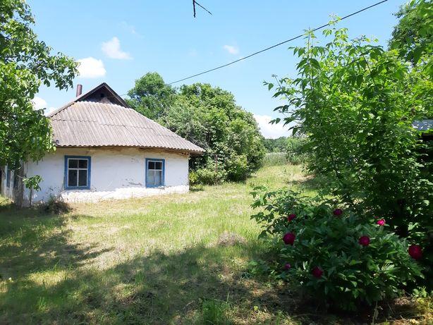 Продаж будинку с.  Фастівка поряд ліс