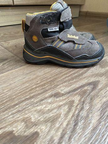 Демисезонні черевики Timberlend