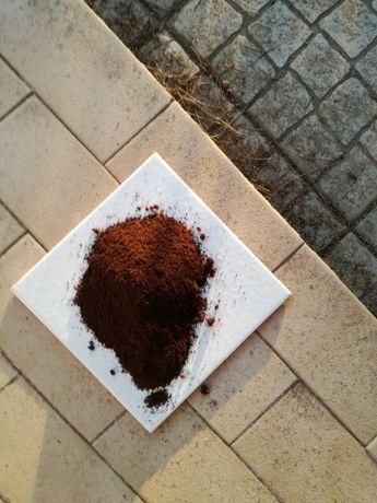 Borras de Café- Estrume biológico - 3 Kg ou mais