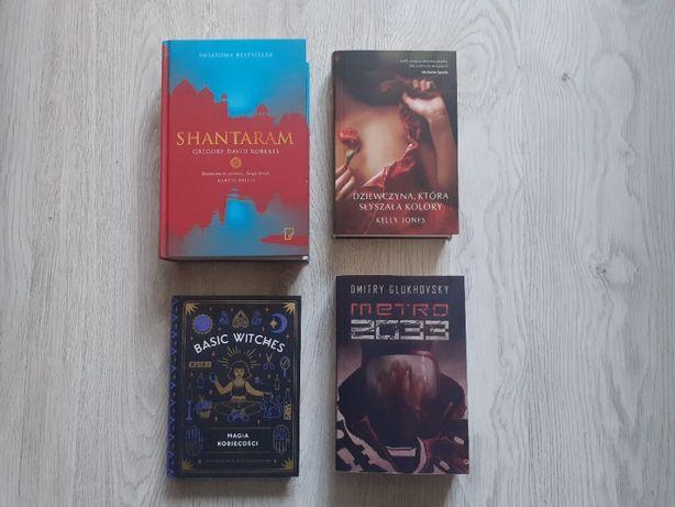 Shantaram książka Basic Witches Metro 2033