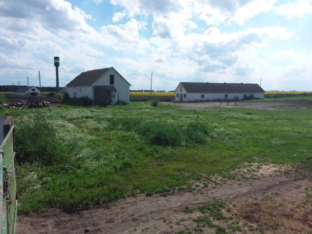 Продаємо комплекс будівель ферми